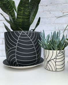 MADE TO ORDER - All black leaf carved large ceramic planter - modern wheel thrown pottery planter - modern ceramics - minimalist pottery Large Planters, Planter Pots, Black Leaves, Spring, Creative Ideas, Etsy, Throw Pillows, Hand Made Gifts, Container Plants