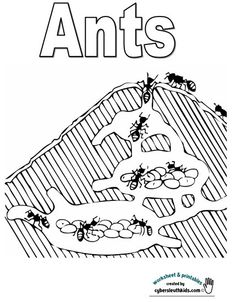 Ant activities for kids download and print pdf file for Ant coloring pages for kids