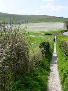 East Sussex path
