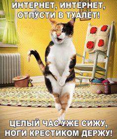 New Funny Photos Humor Smile Ideas