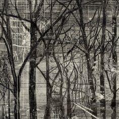 Stephann Van Den Burg, Untitled  pencil and tape on paper, 25.4 x 25.4 cm