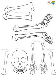 This easy skeleton craft has students writing their name in cursive to create the bones of a skeleton; perfect for Halloween or any skeleton system unit! Fun Halloween Crafts, Holiday Crafts, Holiday Fun, Halloween Ideas, Halloween Party, Halloween Costumes, Skeleton Craft, Cute Skeleton, Name In Cursive