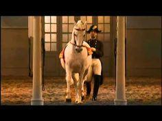 The Spanish Riding School of Vienna. Part 2/2.