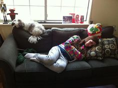 January 2, 2013  Chloe and Sunny Pancake napping by ConanTheGrammarian, via Flickr