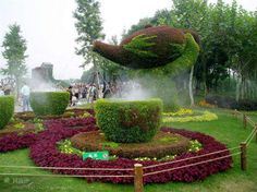 Chinese topiary gardens  ...location and photographer not listed...