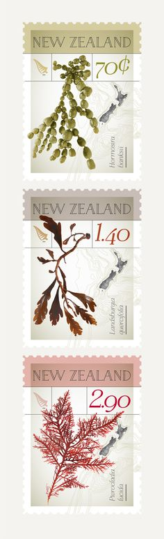 New Zealand Native Seaweed – Stamp Issue Seaweed, Postage Stamps, New Zealand, Nativity, Illustration, Flowers, Coins, Collection, Coining