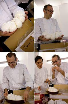 Massimo Bottura e la @Melinda W Early Mozzarella Di Bufala