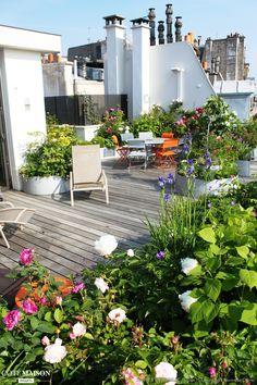Associer des fleurs, des roses, des vivaces, des petits fruits, des fraisiers, des framboises, des herbes comme le thym, votre terrasse sera joyeuse et variée.