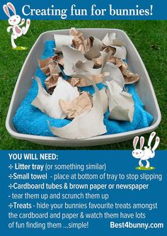 Did you know that bunnies get bored easily. Keep your rabbit happy with our simple boredom busting ideas, toys & tips. toys Boredom breakers for bunnies Bunny Cages, Rabbit Cages, Rabbit Toys, Pet Rabbit, Rabbit Treats, Diy Bunny Cage, Rabbit Playpen, Dwarf Rabbit, Hunny Bunny