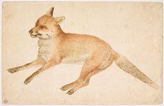 Fox - 15th C. Pisanello (1395-1455) / musée du Louvre, D.A.G.