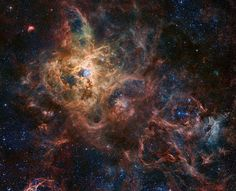 The Tarantula Nebula is more than a thousand light-years in diameter, a giant star forming region within nearby satellite galaxy the Large Magellanic Cloud, about 180 thousand light-years away.  - NASA APOD