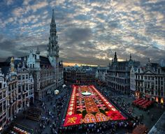 11 Astonishing Photos Of Places That You Gonna Love - Largest carpet of flowers in the world. Brussels, Belgium