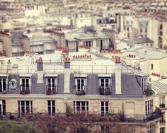 Rooftops in Paris, can't get enough of them.....by liz.rusby, via Flickr