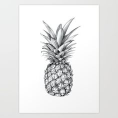 Pineapple, fruit, tropical, holiday, summer, black & white, drawing, sketch, pencil