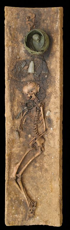The woman, dead at 30, was buried 1,900 years ago in an oak log near Juellinge, Denmark. Interred with her was a long-handled bronze strainer that still held residue of a fermented drink she may have been meant to enjoy in the afterlife.