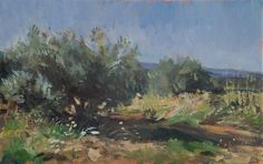 Julian Merrow-Smith | Olive Grove