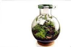 20 liter biodome by MacNettlesDesign on Etsy, $1200.00