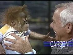 """Johnny Carson Apes with an Adorable Baby Orangutan on """"The Tonight Show Starring Johnny Carson"""""""