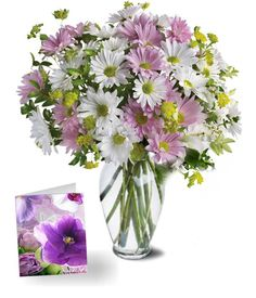 Beautiful Bouquet Of 12 Fresh Flowers Daisy Lavender With Suitable Size Greeting Card Day