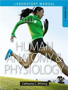 Holes essentials of human anatomy physiology free ebook thebookisapdfebookonly itwill fandeluxe Choice Image