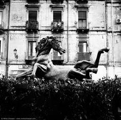 via Umberto I, Catania - Sicily