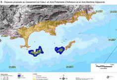 Attendu depuis fin juillet, les conclusions de la consultation sur la nouvelle reglementation peche loisirs aire marine Port-Cros sont publiées.