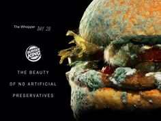 Burger King just launched a new ad campaign featuring a moldy Whopper, and it reflects a trend taking over the fast-food industry Donald Trump, Burger And Fries, Burgers, Fast Food Chains, Restaurant Branding, Food Industry, Advertising Campaign, Print Advertising, Print Ads