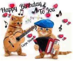 Beautiful cousins Myeloid and Trix 🎂🎉 Happy Birthday 🎶 Happy Birthday Pictures, Birthday Songs, Happy Birthday Funny, Happy Birthday Messages, Happy Birthday Quotes, Cat Birthday, Happy Birthday Greetings, Animal Birthday, Monday Greetings