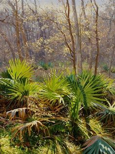 Palmettos by Mark Haworth Oil ~ 24 x 18