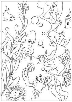 Hide and Seek   Kindercamp--Under the Sea   Pinterest ...