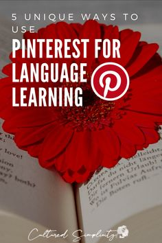 5 easy ways you can use Pinterest to learn a foreign language - Cultured Simplicity Best Language Learning Apps, Foreign Language Teaching, French Language Learning, Learn A New Language, Teaching Spanish, Second Language, Spanish Language, Vietnamese Words, Vietnamese Language