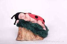 Baby ladybug, Toronto newborn photographer