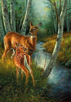 Birch Creek-Whitetail Deer Art Prints by Rosemary Millette Wildlife Paintings, Wildlife Art, Animal Paintings, Deer Pictures, Pictures To Paint, Animals And Pets, Cute Animals, Deer Art, Tier Fotos