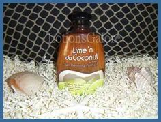 Squeeze Lime n da Coconut Tanning Lotion - $28.15