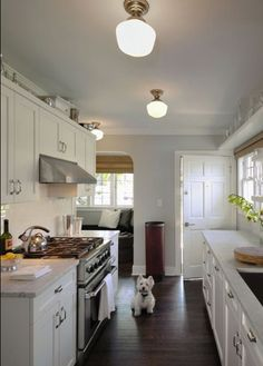 Best Galley Kitchen Lighting Images On Pinterest Kitchens - Galley kitchen light fixtures