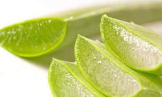 Aloe vera is useful for preventing the aging of the skin. Aloe vera gel is helpful in improving the lesions. It stabilizes blood sugar and reduces triglycerides in diabetics. It prevents kidney stones and protects the body from oxalates in coffee and tea. Aloe Vera For Hair, Aloe Vera Gel, Natural Treatments, Natural Remedies, Natural Sunburn Relief, Le Psoriasis, Sunburn Remedies, Forever Living Products, Hair Loss