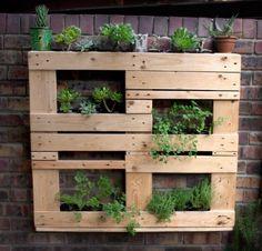 Unstructured pallet vertical garden Vertical garden