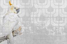 wall and deco papier peint cockatoo