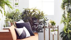The green look: how to style with indoor plants in your home.