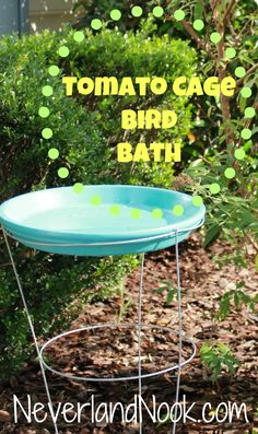 Inexpensive Bird Bath - Tomato Cage and a Planter Saucer -
