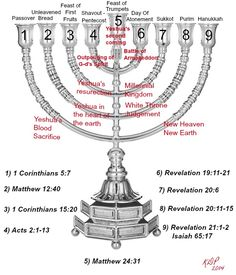The Messianic Prophetic Branches of the Hanukkah Menorah and the first Seven are the appointed Feasts of Elohim. The first four have been fulfilled. Bible Study Notebook, Bible Study Tools, Biblical Verses, Bible Scriptures, Biblical Symbols, Jewish Beliefs, Messianic Judaism, Bible Mapping, Learn Hebrew
