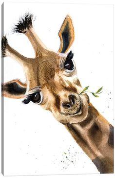 Canvas Art by Olga Shefranov | iCanvas Canvas Art Prints, Canvas Wall Art, Spotted Owl, Asian Landscape, Baby Raccoon, Giraffe Art, Print Artist, Animals For Kids, Canvas Frame