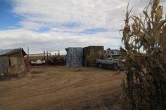 Loading-out-hay on Linda's farm near Delta, Colorado.
