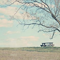 Landscape Nature Photography  Pastel Scenery   Baby by DreamyPhoto, $25.00
