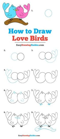Drawing For Beginners Draws - Learn to draw love birds. This step-by-step tutorial makes it easy. Kids and beginners alike can now draw great looking love birds. Bird Drawings, Love Drawings, Easy Drawings, Love Birds Drawing, Interesting Drawings, How To Draw Birds, Doodle Art For Beginners, Drawing Tutorials For Beginners, Easy Drawing Steps