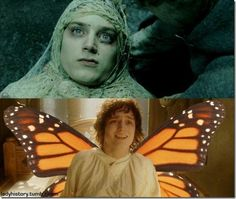 and after he was wrapped up in a spider web cocoon he turned into a beautiful butterhobbitfly