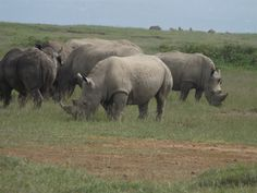 Africa Home Adventure Safaris Kenya Adventure Safari Tours
