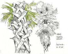 Naples, 2011 | Gerard Michel Watercolor Journal, Watercolour Painting, Drawing Sketches, Sketching, Drawings, Moleskine, Urban Sketchers, Journal Inspiration, Naples