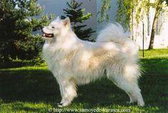 My Legend Kimularak of Karasea 03 - My_Legend_Kimularak_of_Karasea_03.jpg