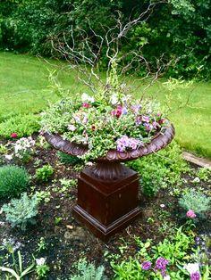 Herb garden 2013